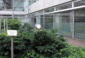 Sichtschutz / Stadt Neuss Jugendamt